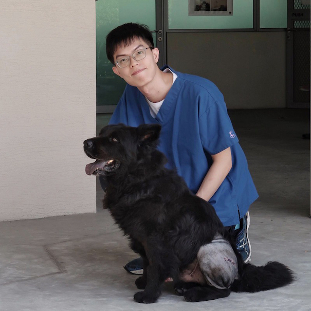 Dr Chow with Karuppan, a two-year-old black chow who was rescued and underwent surgery for severe hip dysplasia. It was the first time this surgery was done on a dog in SPCA