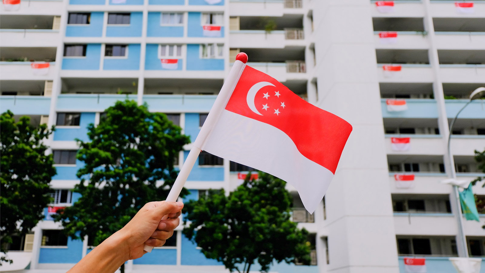 Celebrate Singapore National Day 2020